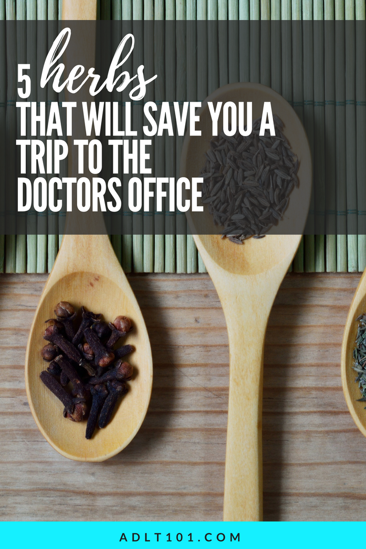 Medicine can sometimes do more damage than good. Use these herbs the next time you reach for your medicine cabinet.